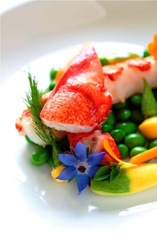 Lobster with garden grown edamame & tarragon lobster juice